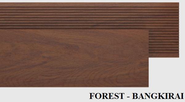 FOREST-BANGKIRAI