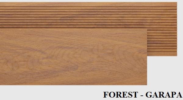FOREST-GARAPA